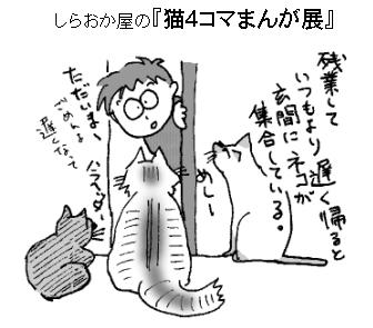 猫4コマまんが展