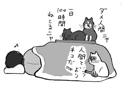 こたつと猫と